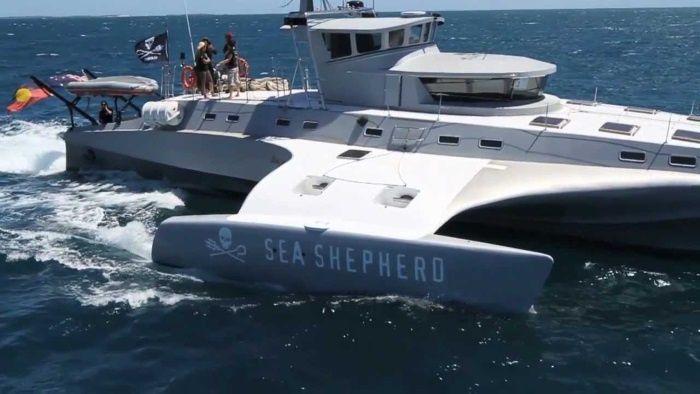 Le &quot&#x3B;Brigitte Bardot&quot&#x3B; le trimaran de Sea Shepherd durant toutes les nauticales 2016