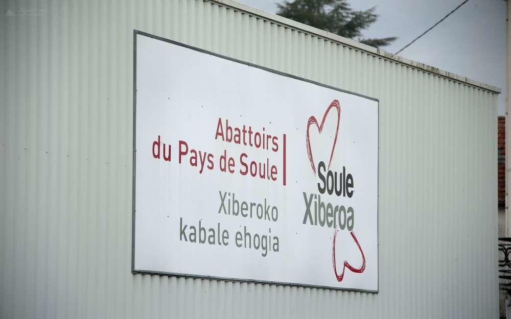 L'abattoir de Mauléon est au centre d'une vive polémique suite aux révélations de l'association de protection des animaux L214.