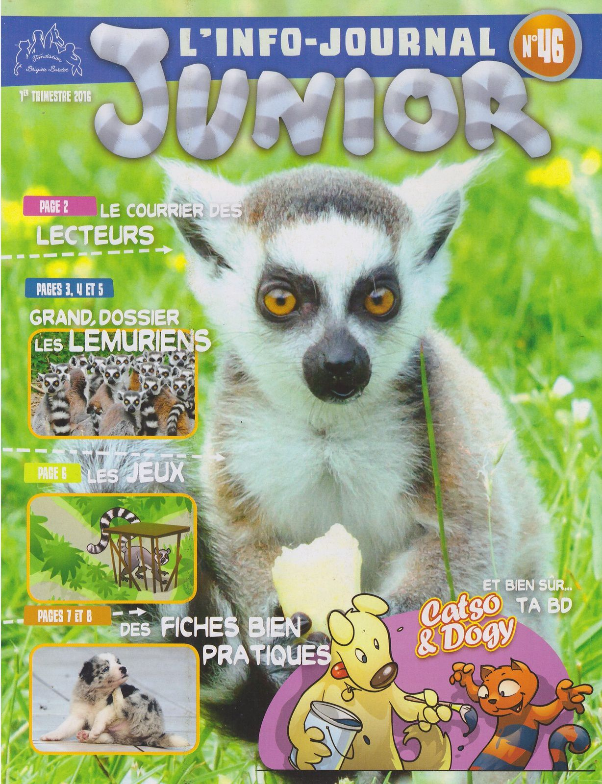 Info journal junior n°46 du 1er trimestre 2016