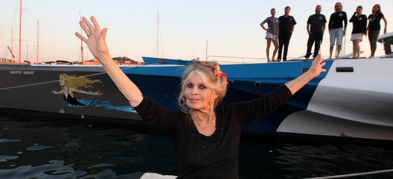 Nouvelle vidéo choc dans deux abattoirs: la lettre ouverte de Brigitte Bardot au &quot&#x3B;ministre de la Souffrance&quot&#x3B;