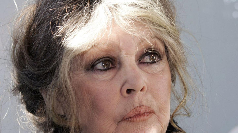 "Quand Brigitte Bardot reproche sa ""nostalgie du combat"" au maire de Sainte-Maxime"