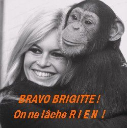 Brigitte Bardot en campagne contre Air France..