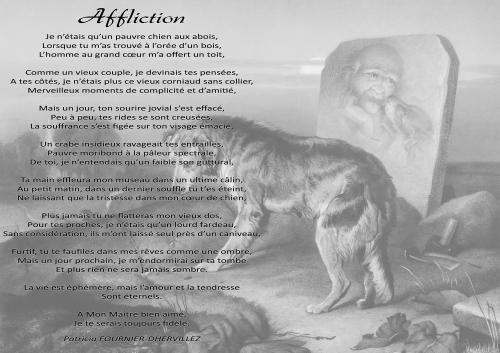 Poème écrit par Patricia FOURNIER - DHERVILLEZ