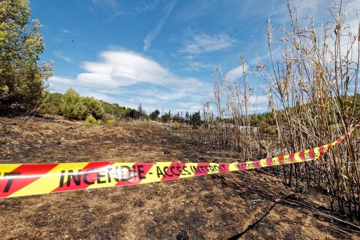 Incendies: la Fondation Brigitte Bardot interpelle Nicolas Hulot pour suspendre la chasse