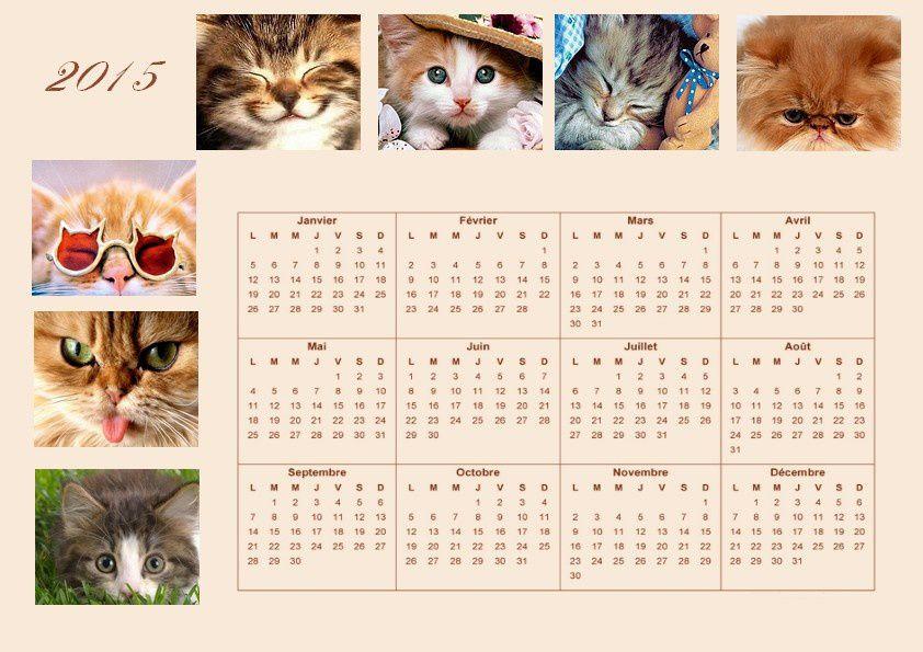 Calendrier annuel 2015 (thème chat)