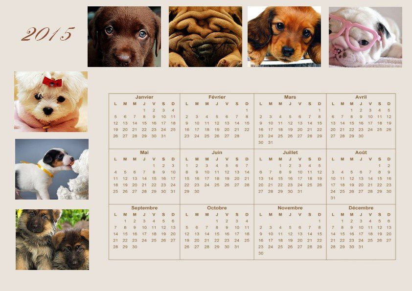 calendrier annuel 2015 th me chiens. Black Bedroom Furniture Sets. Home Design Ideas
