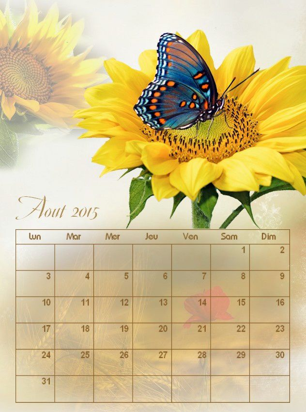 Calendrier Aout 2015