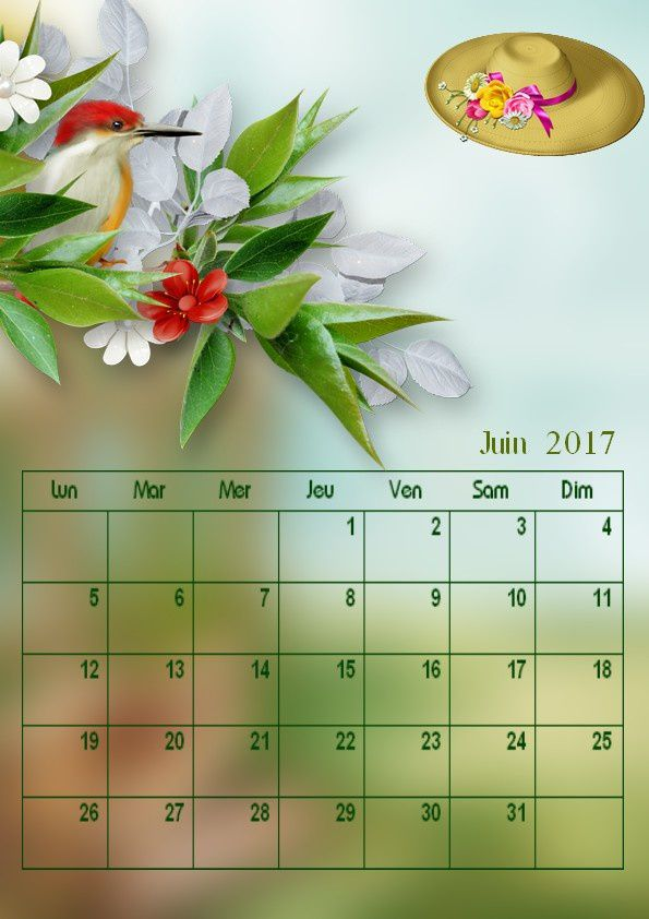 Calendrier mensuel juin 2017