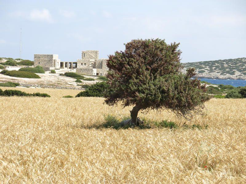 Les Cyclades, l'Eden grec  (Echappées belles, France 5).