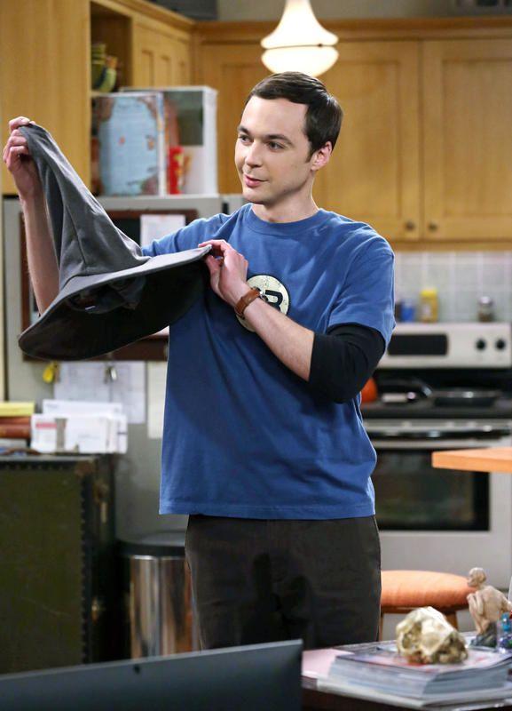 La saison 8 de The Big Bang Theory arrive sur Canal+.