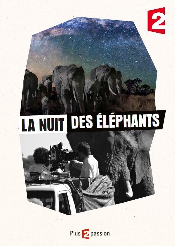 Documentaire évènement : La nuit des éléphants le 23/12 sur France 2 (Inédit).