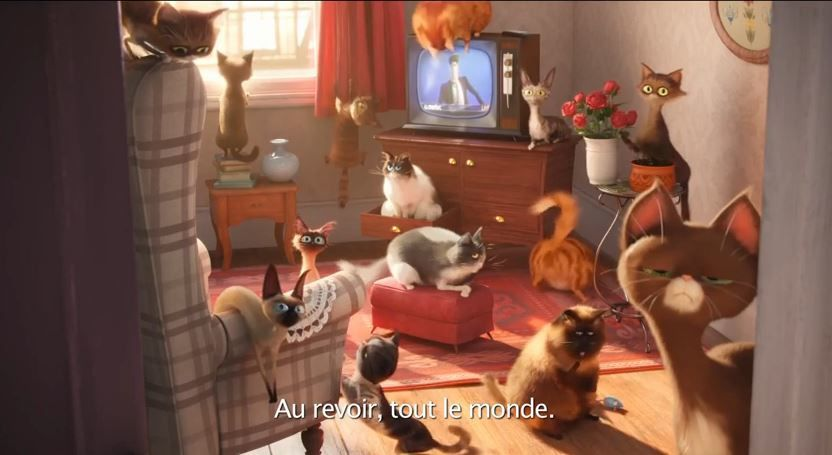 Bande-annonce du film d'animation The Secret Life of Pets.