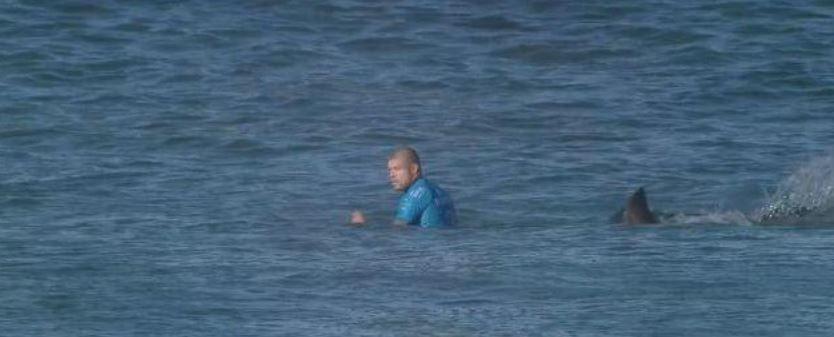 Le surfeur Mick Fanning attaqué par un requin...et miraculé ! (Vidéo)