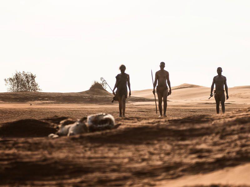 A voir ce samedi : Quand Homo Sapiens peupla la planète.