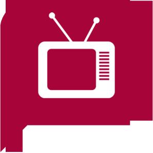Le 11 décembre sur TF1 : Les z'awards de la TV en direct.