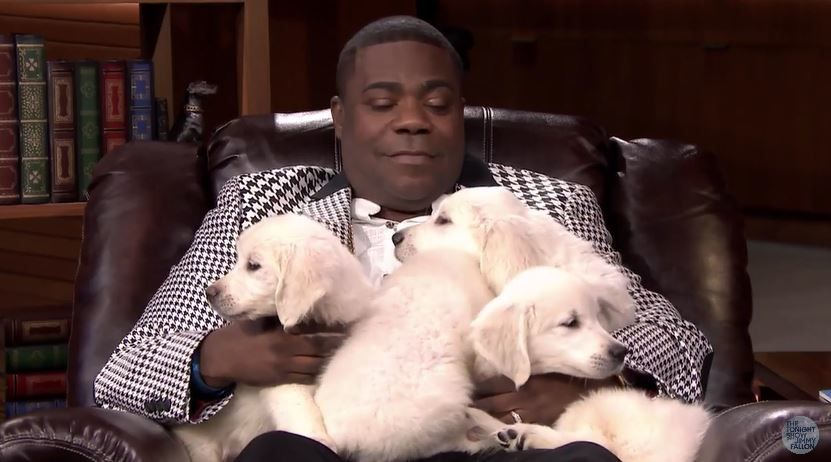 Retour du Pup Quiz avec Jimmy Fallon et Tracy Morgan.