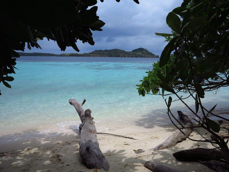 Indonésie, l'éveil d'un archipel ce vendredi dans Thalassa.