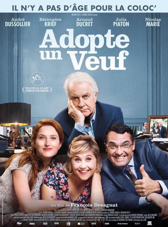Box-office hebdo : bon démarrage pour Adopte un veuf, nouveau fort recul pour Les Visiteurs 3.