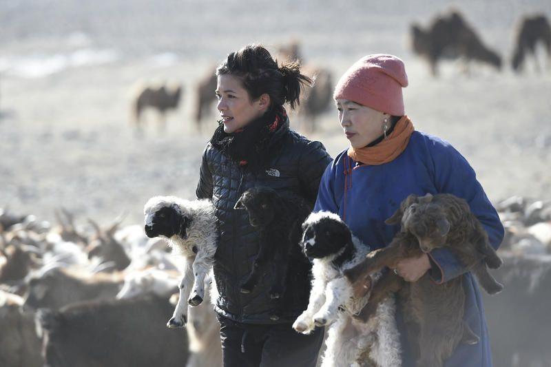 Mélanie Doutey chez les nomades de Mongolie : les enjeux de cette expédition en terre inconnue.