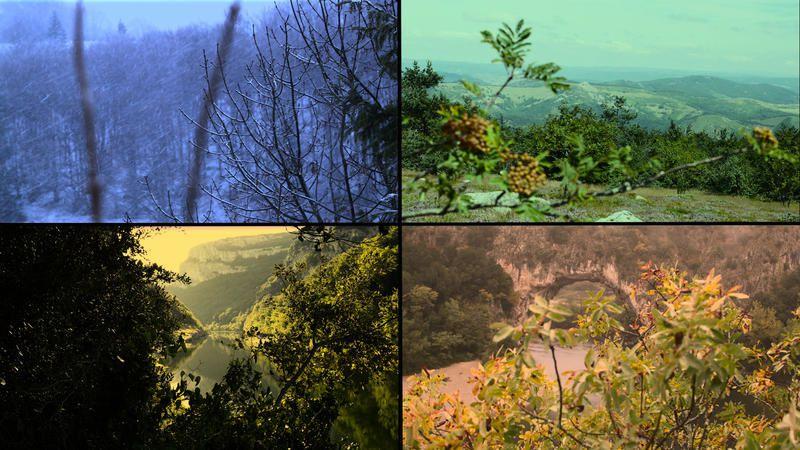 Focus sur l'Ardèche le dimanche 22 janvier sur France 5.