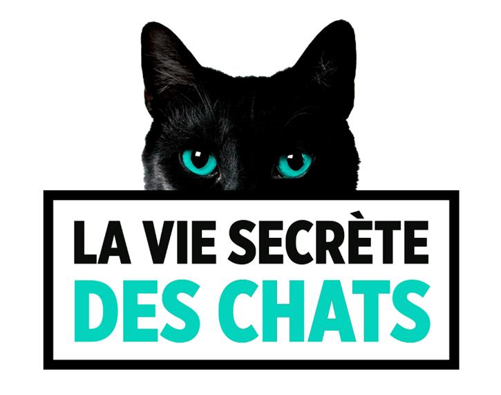 La vie secrète des chats (E04/??)