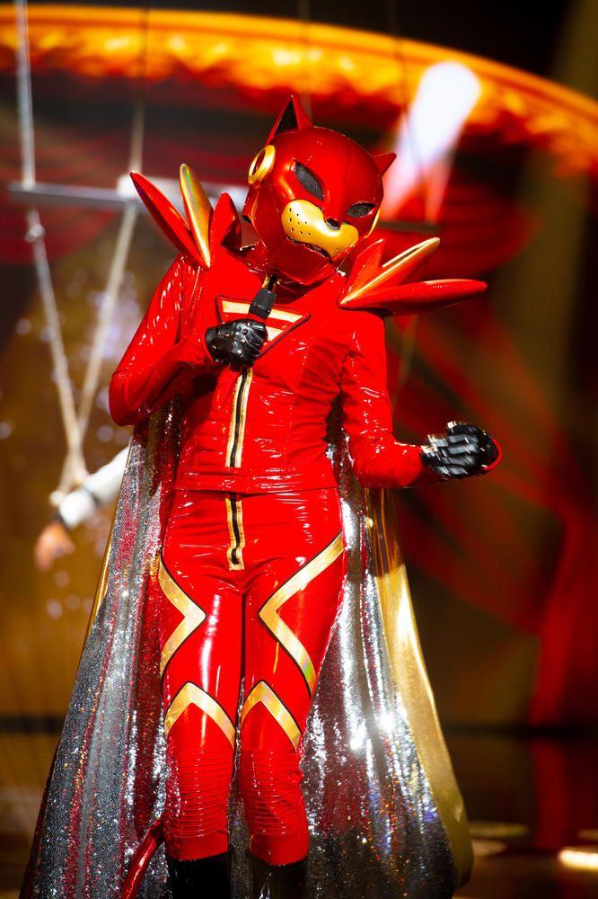 Mask Singer sur TF1 :  qui se cache sous les costumes de paon, lion, abeille et panthère ? (Photos)
