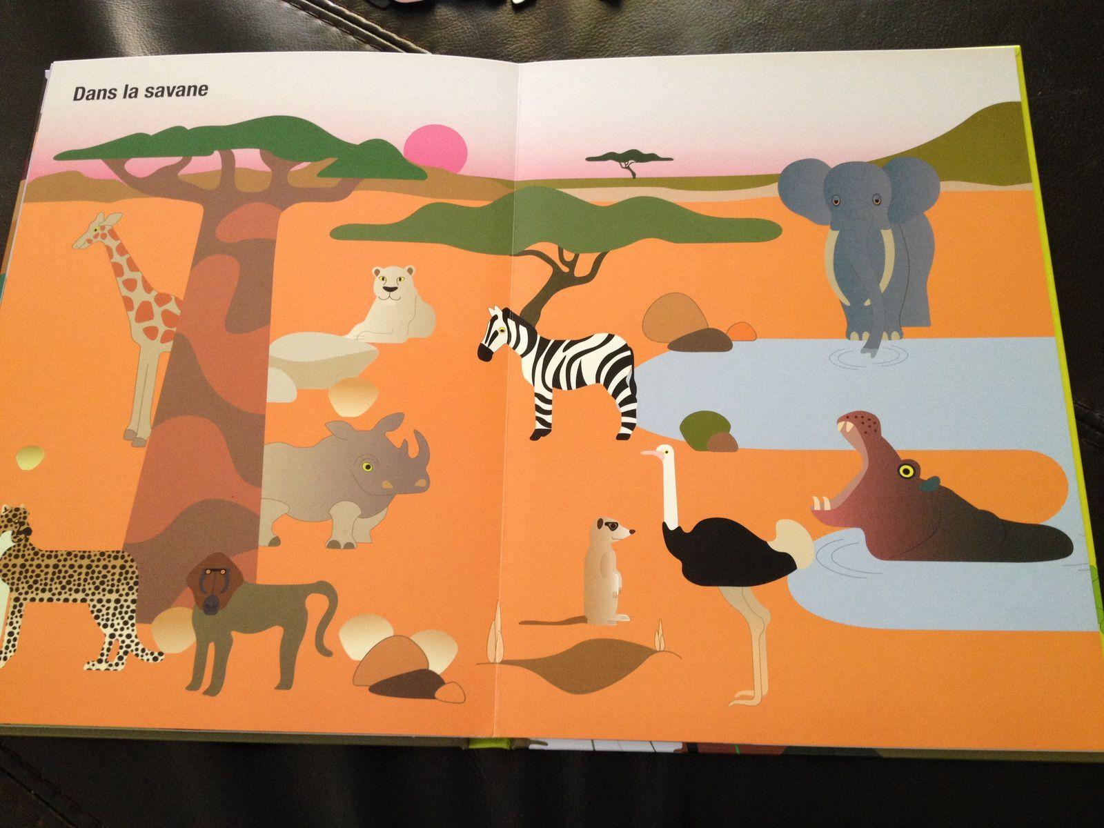 Un livre magnétique sur les bébés animaux (ed. Tourbillon)