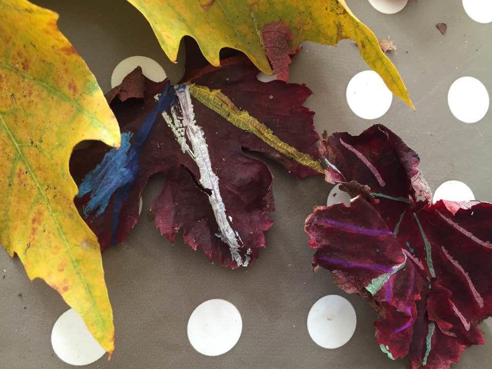 [Activité] Dessiner/Peindre des feuilles d'arbres