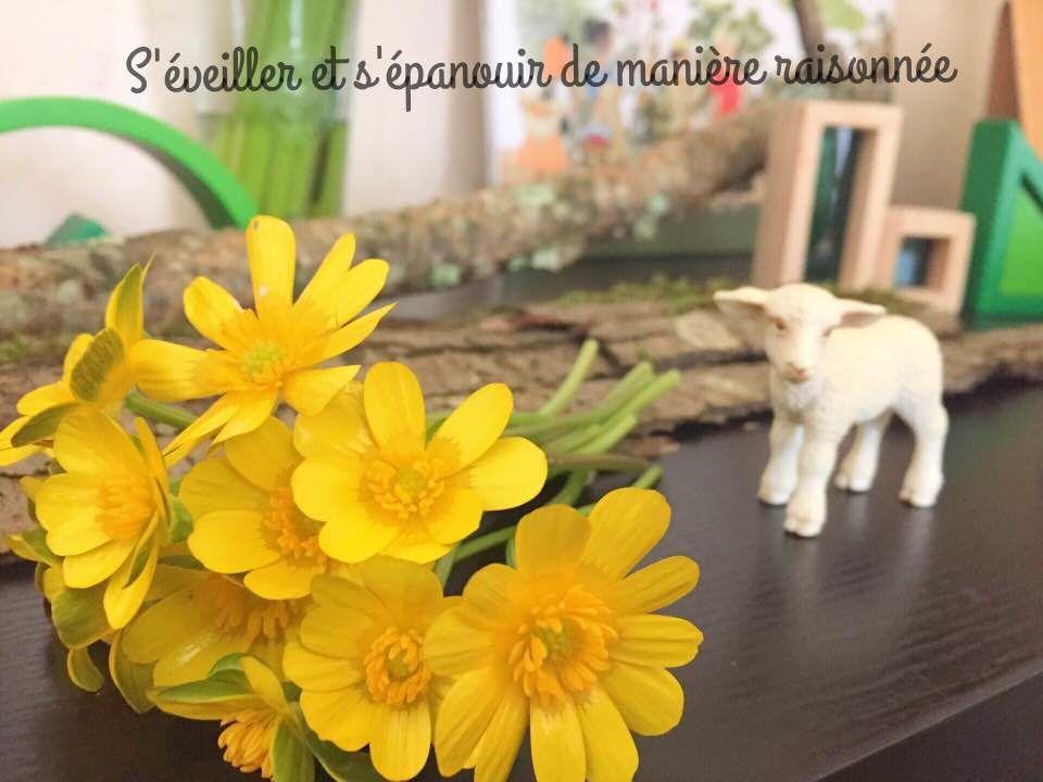[Activité] Le printemps est là.. entre table des saisons et littérature jeunesse