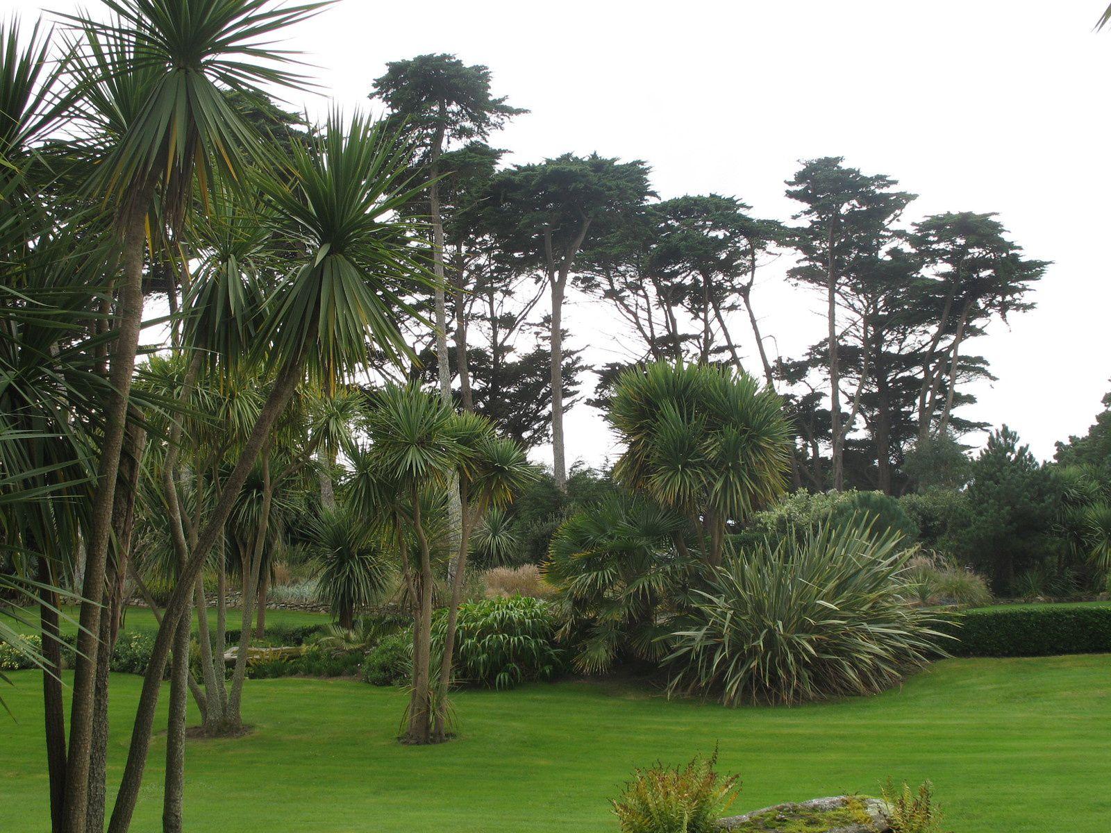 Jardin de l 39 le de batz bretagne jardins merveilleux - Jardins de bretagne a visiter ...
