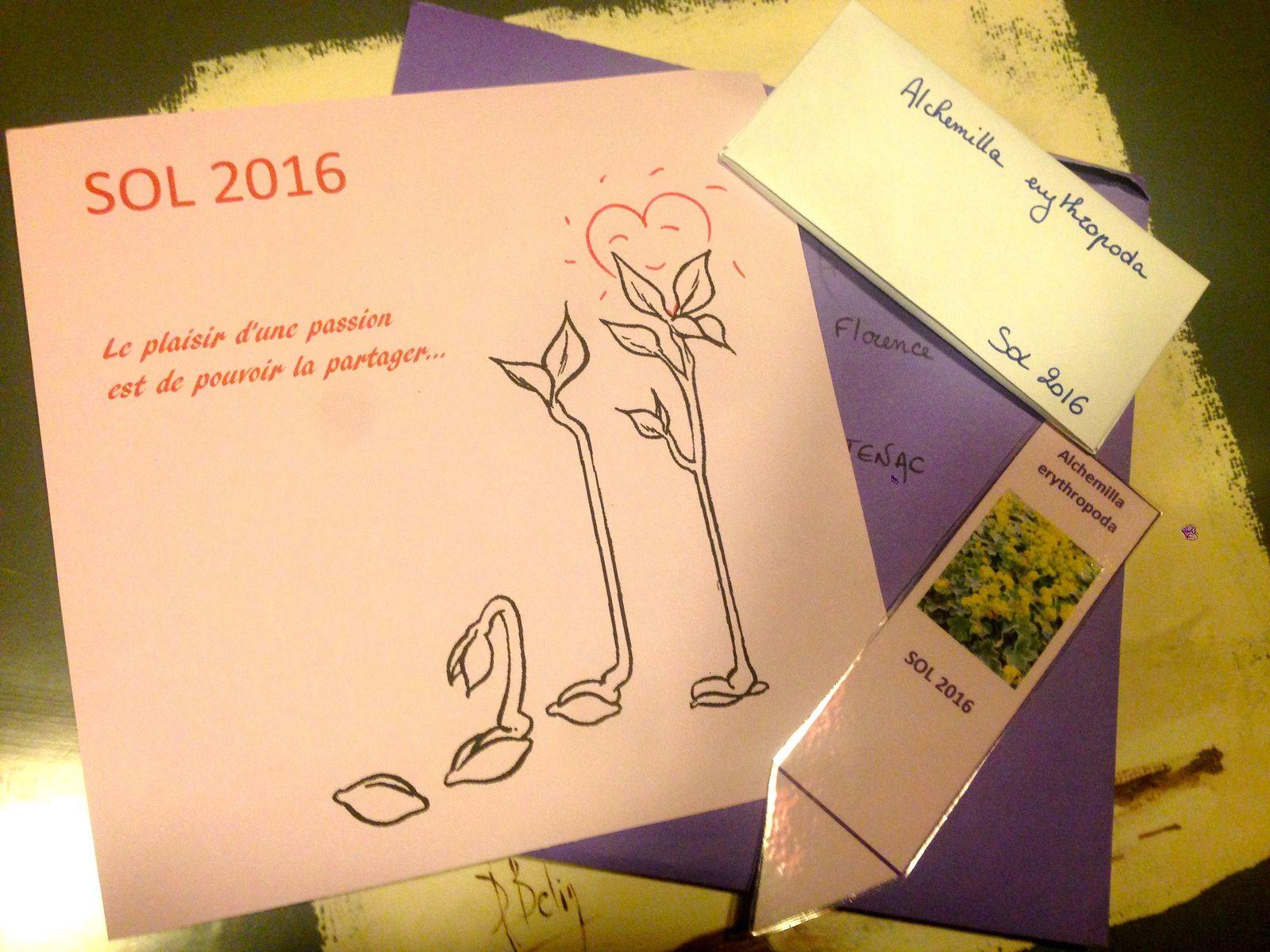 Merci aux seedlovers - Audrey de Normandie