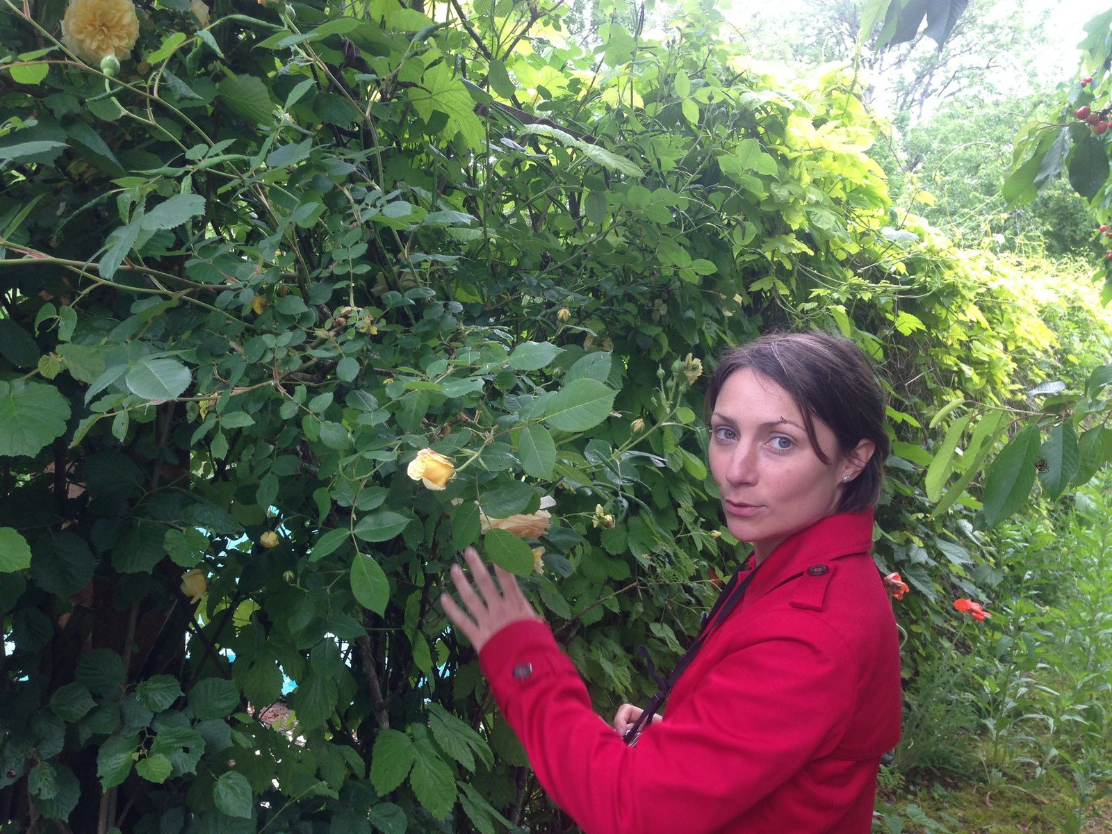 """Elodie - blog """"monjardinquercynois"""""""