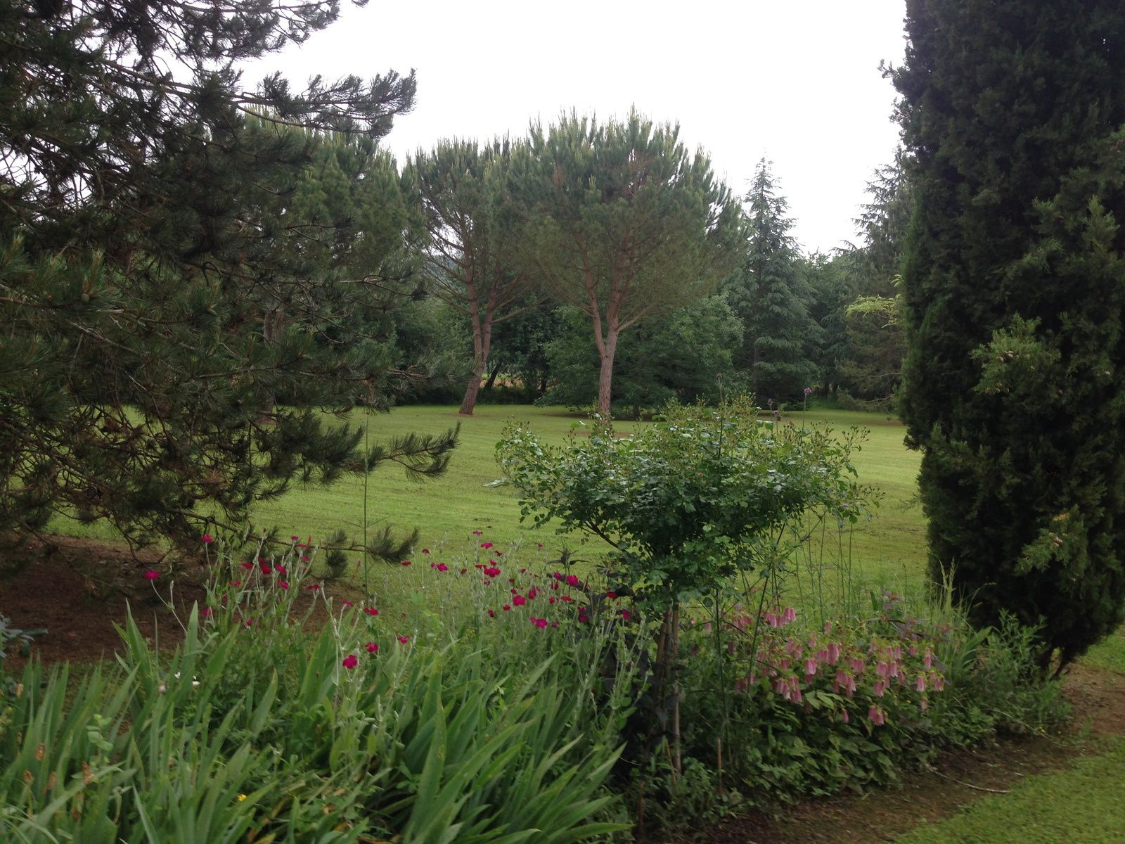 Le grand tour de mon jardin - Open Gardens