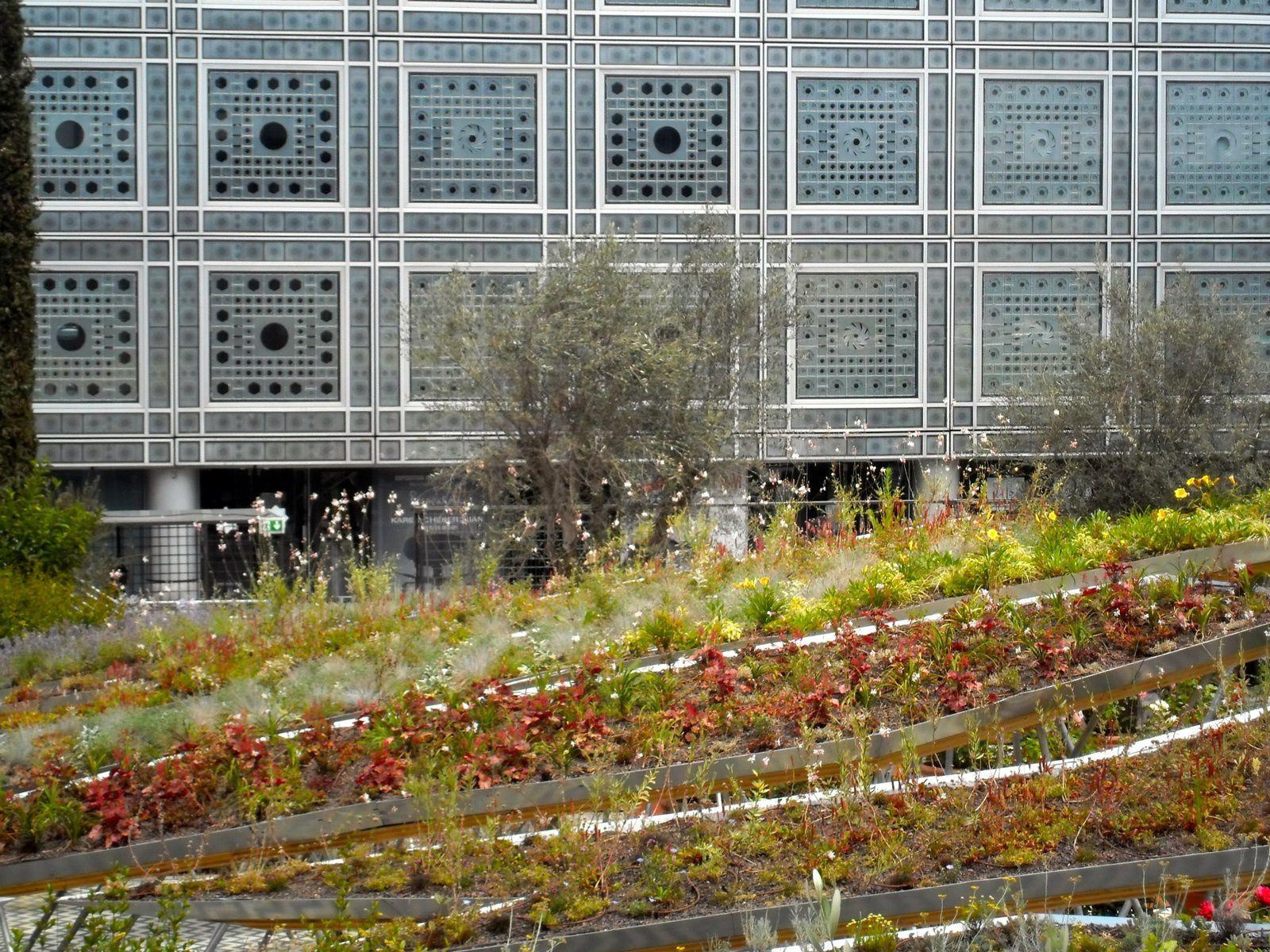 Jardins d 39 orient ima paris jardins merveilleux for Expo jardin paris