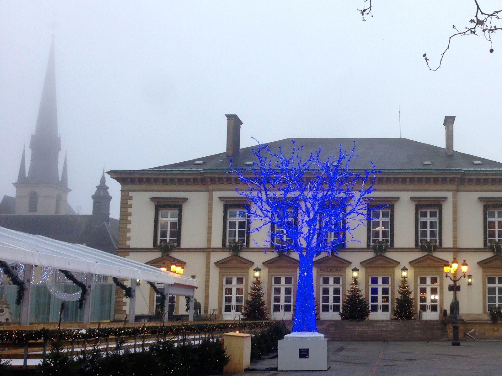 L'arbre bleu - Luxembourg