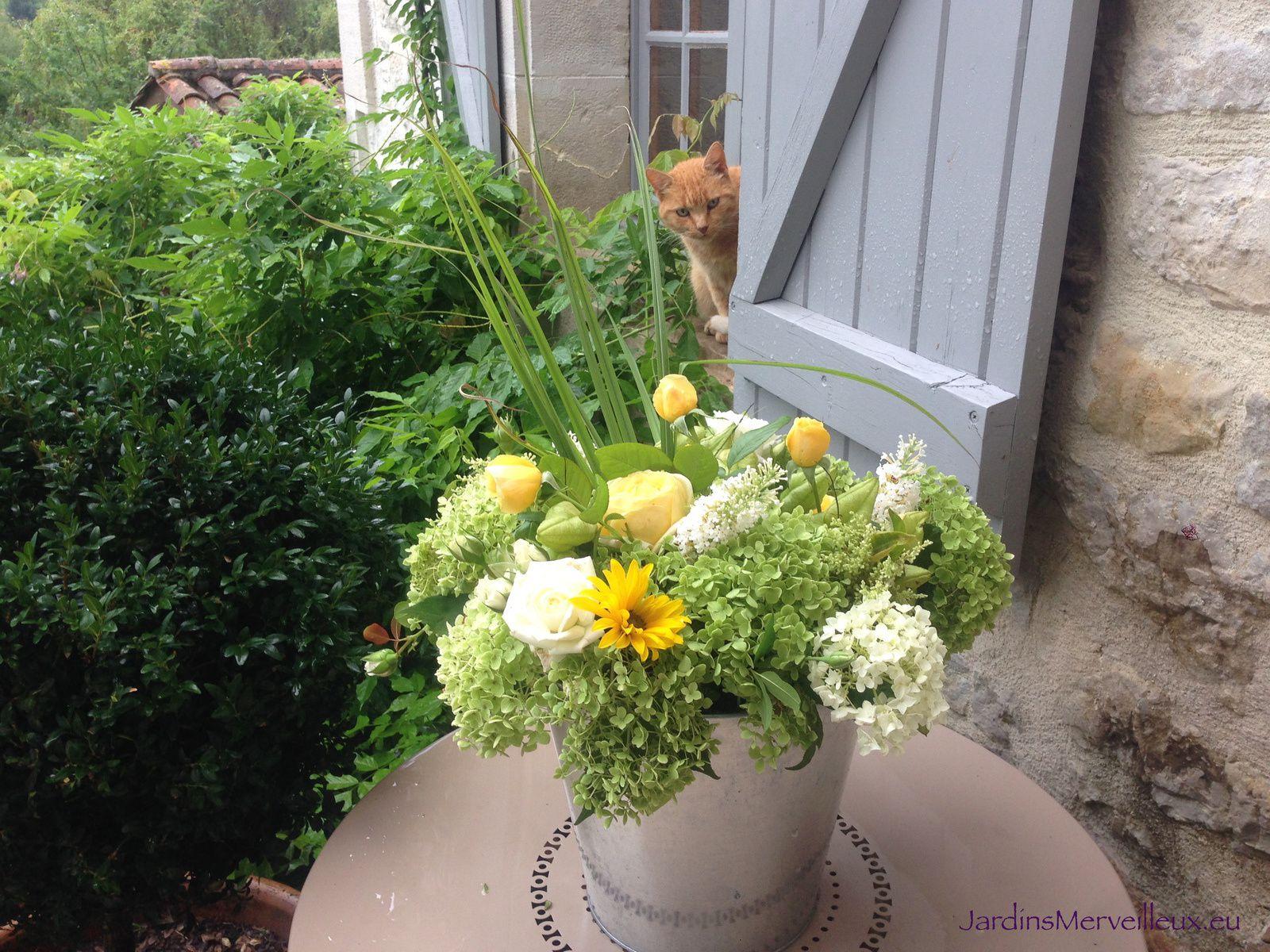 J'observe ce qui se passe à l'intérieur de la maison et les allées et venues vers le jardin...