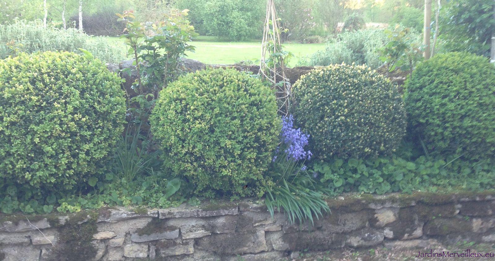 Avril en bleu au Jardin de Frescati