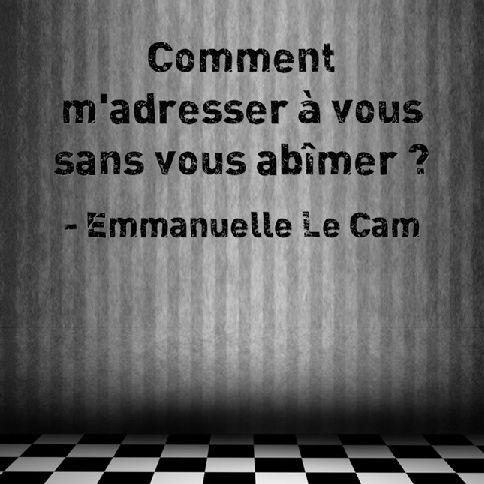 Fulguration - Emmanuelle Le Cam