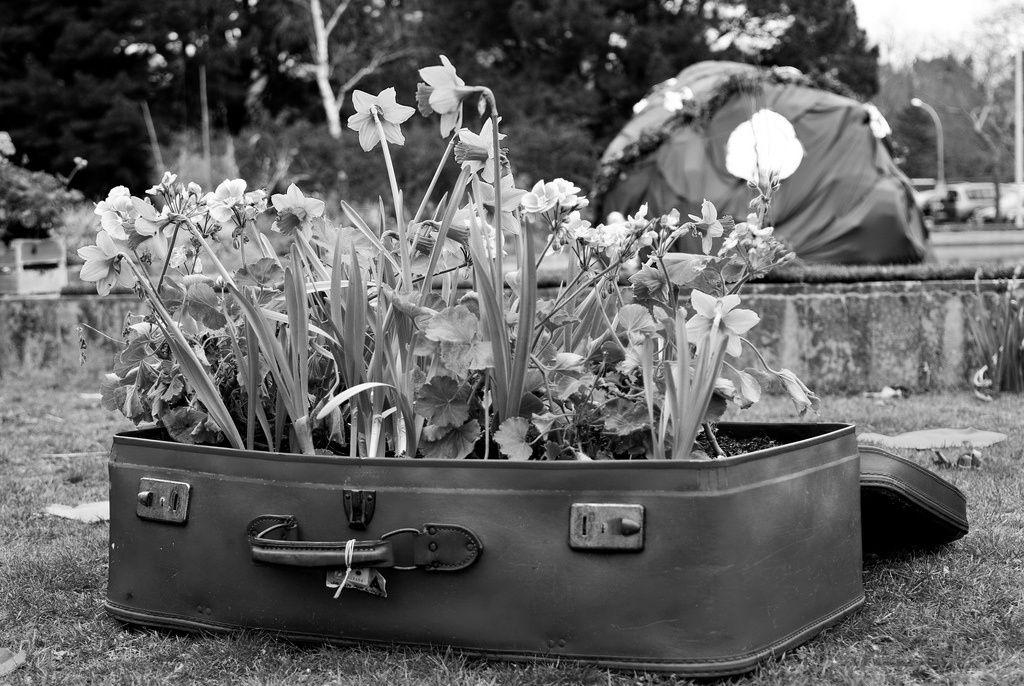 La valise du poète.