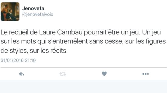 Tweet- Résumé - Laure Cambau