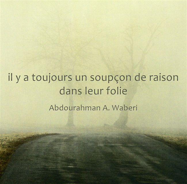 Fulguration - Test - Abdourahman A. waberi
