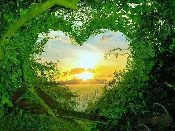 Amour de la nature