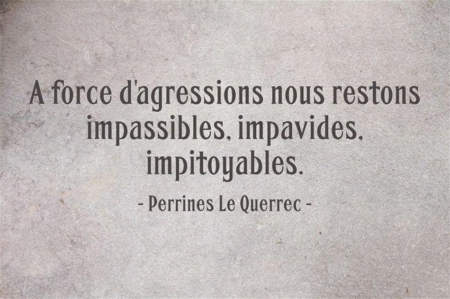 Fulguration - Perrine Le Querrec