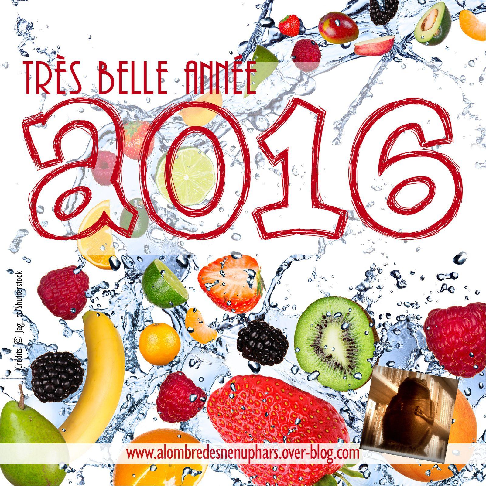 Belle et joyeuse année 2016 !