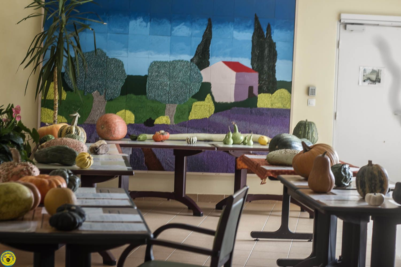 Les cucurbitacées se montrent sous toutes leurs formes: exposition à la maison de retraite Les Carlines