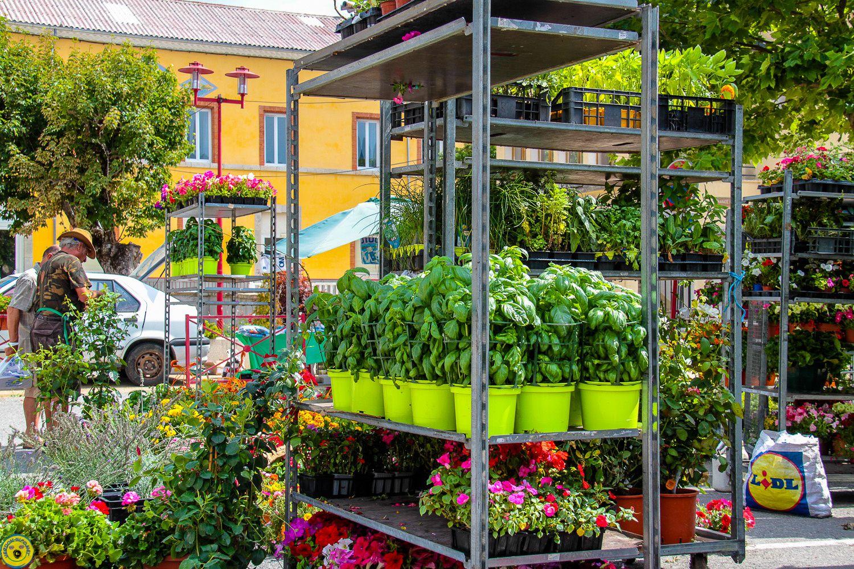 Le temps était idéal pour le marché aux saveurs de St Andre les Alpes.