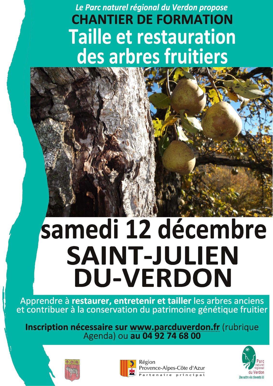Chantier-formation :  Taille, restauration et soins de vieux arbres fruitiers