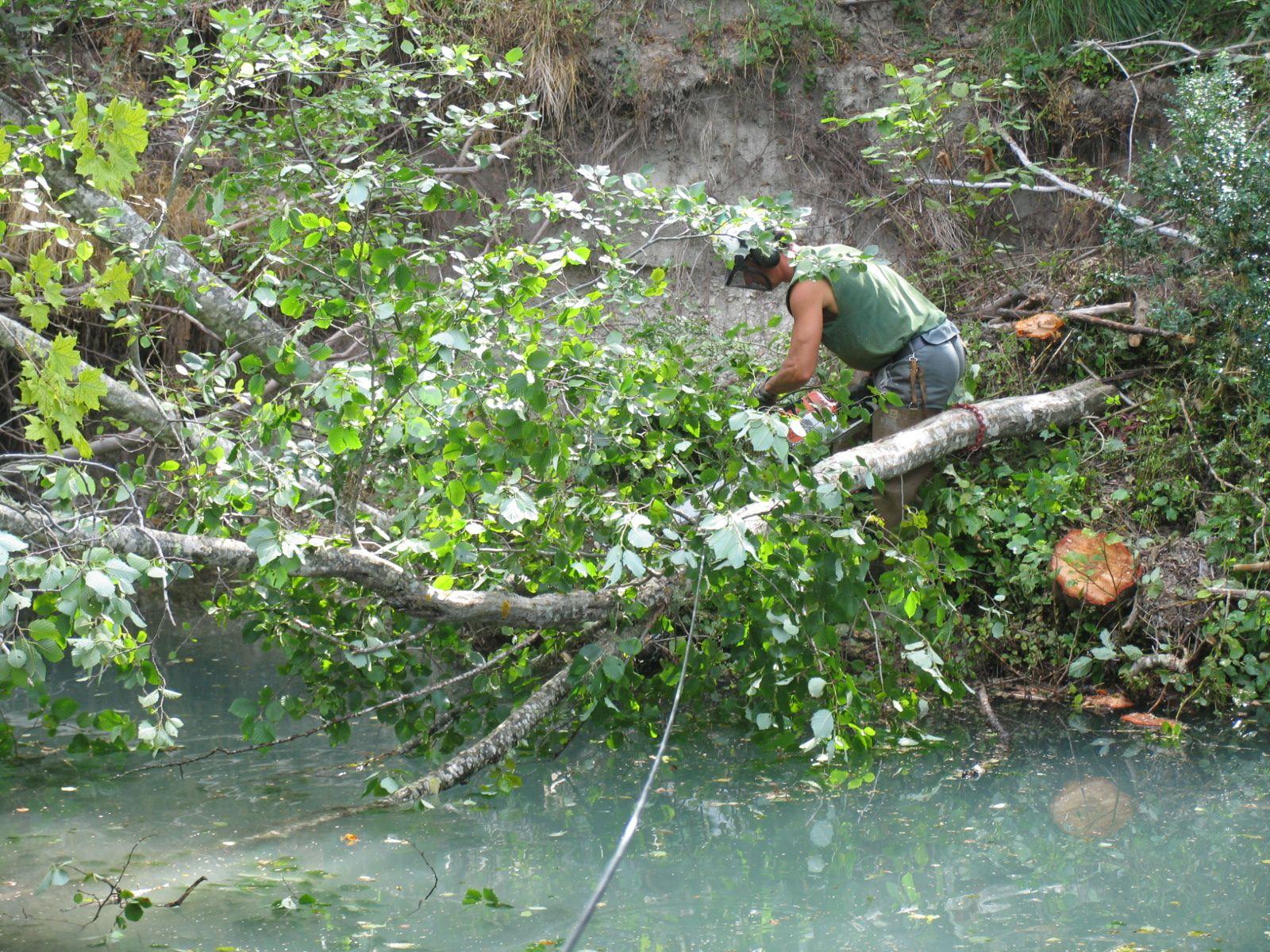 PNRV : Travaux d'entretien des rivières  Vous avez votre mot à dire !