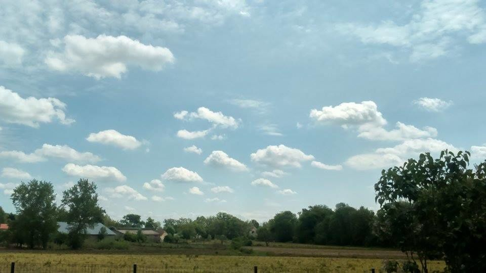 Sous les cieux palois -