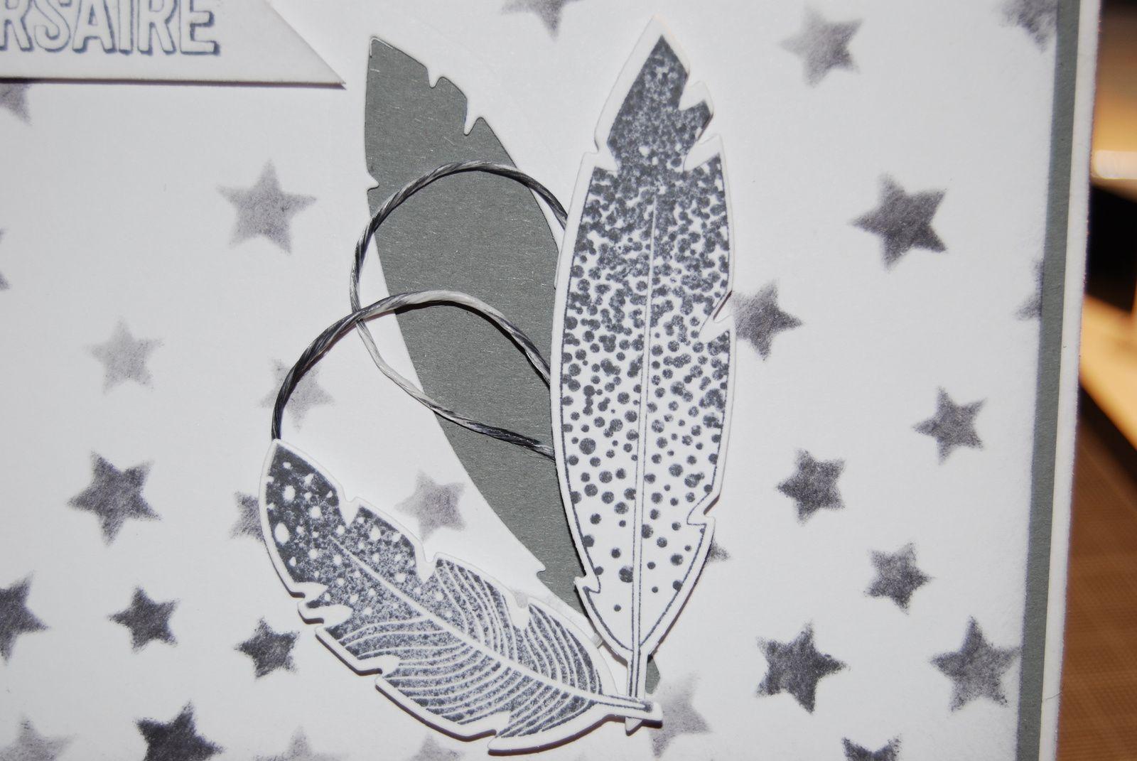 Des plumes et des étoiles ...